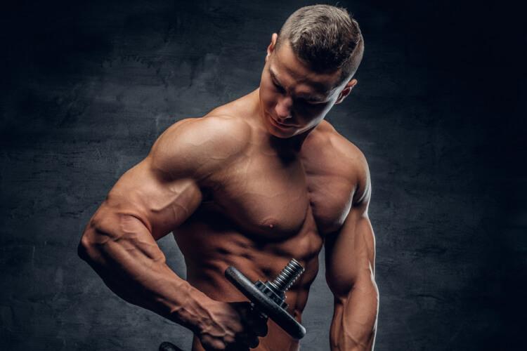 腕 の 筋肉