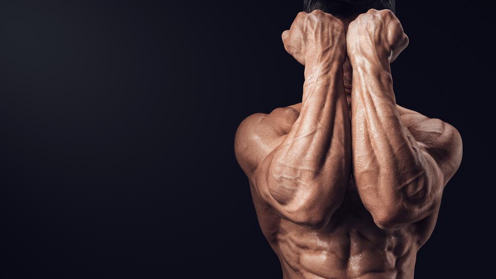前腕の筋トレ!極太の腕を手に入れるために重量な筋トレを紹介