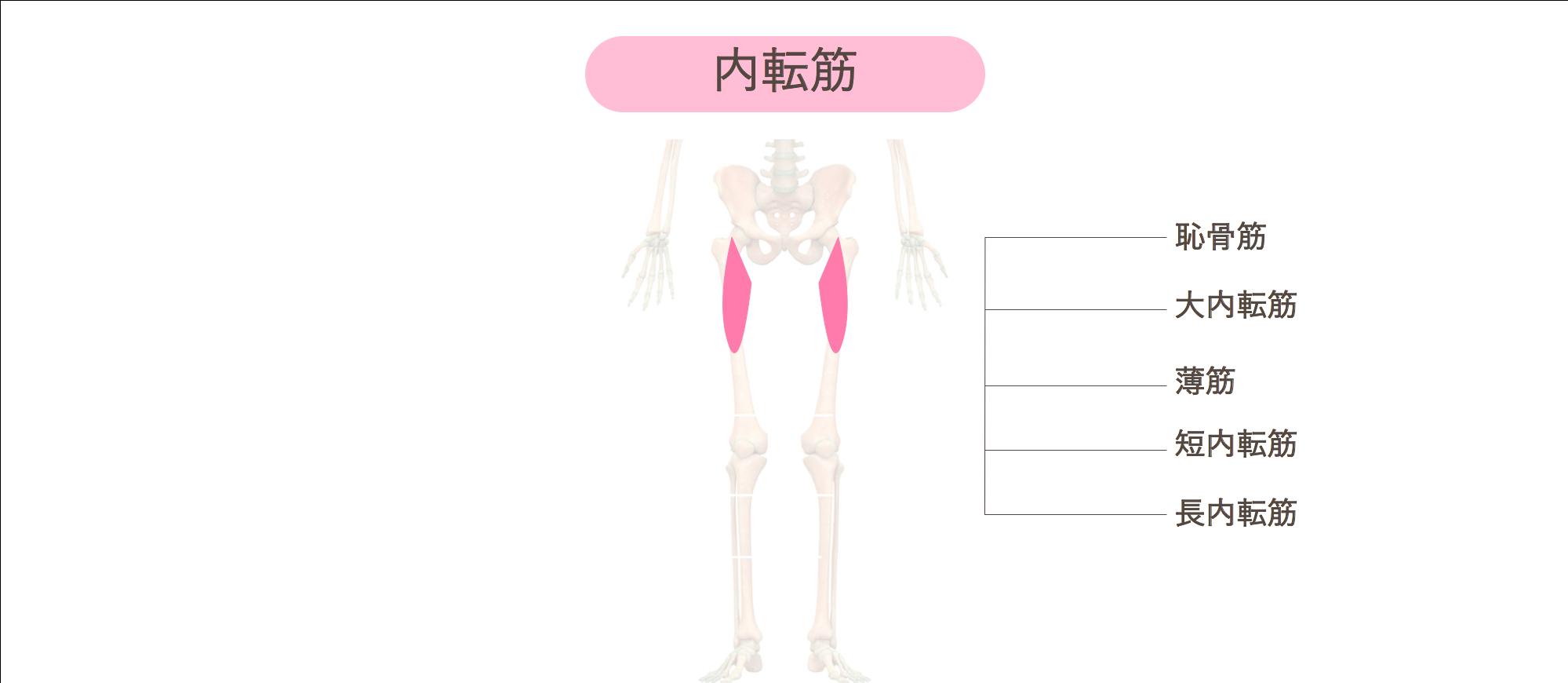 腿 痛い が の 太 付け根